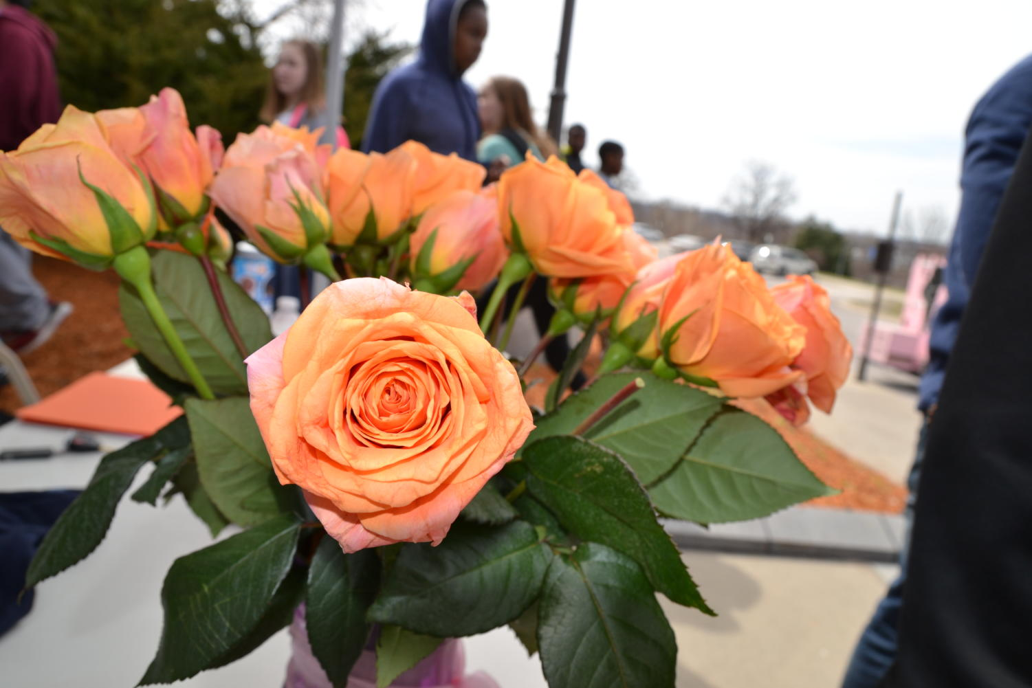 Orange+roses+represent+the+lives+lost+in+the+MSD+school+shooting.