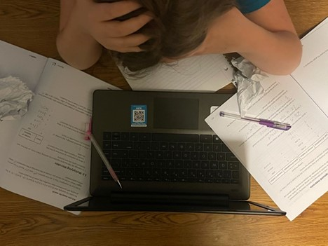How Online Learning Affected Students Grades